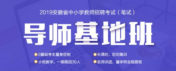 2019安徽教师考编备考课程-导师基地班