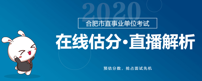 2020年合肥市直事业单位考试题目估分解析