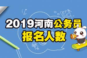 2019河南公务员报名人数