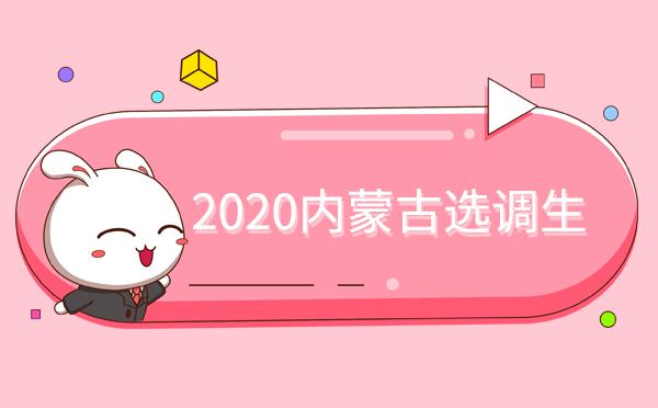 2020年内蒙古选调生选调对象