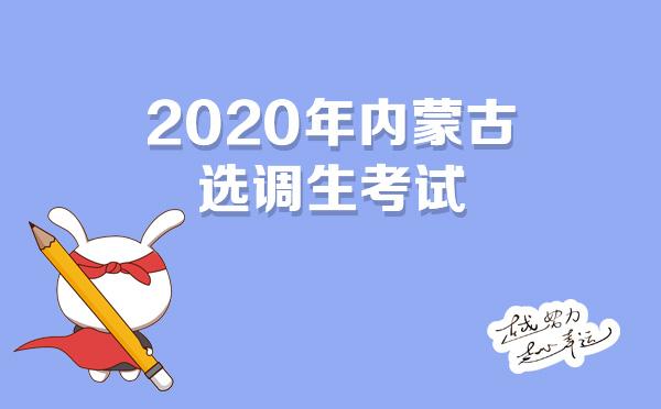 2020年内蒙古选调生
