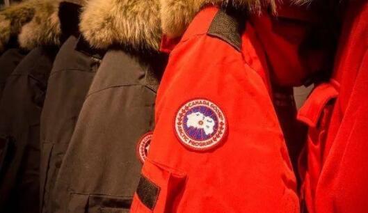 2019省公务员申论热点:加拿大鹅暴