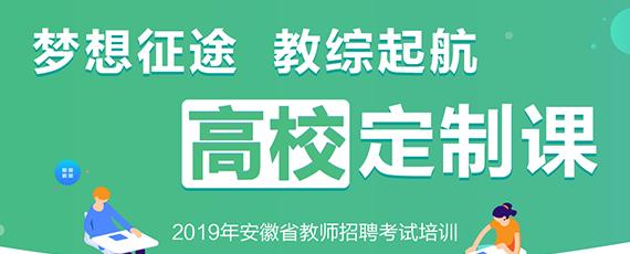 2019安徽教师招聘考试教综高校定制课