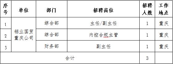 国家电投集团铝业国际贸易有限公司招聘职位