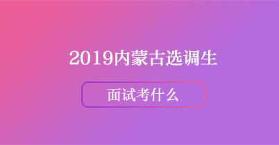 2019内蒙古选调生面试都考什么