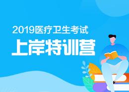 2019医疗卫生考试上岸特训营