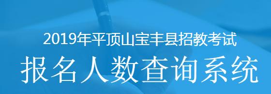 2019平顶山宝丰县招教报名人数查询系统