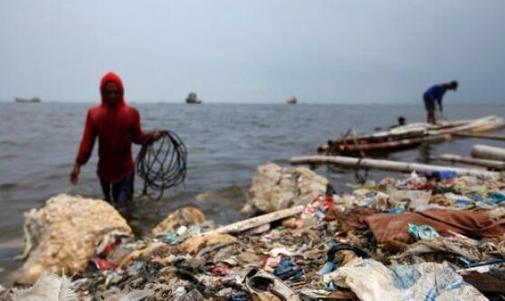 印尼洋垃圾退美国