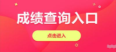 2019湖南长沙市审计局政府投资重点项目审计中心招聘成绩查询入口