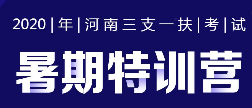 2020河南三支一扶暑期特训营