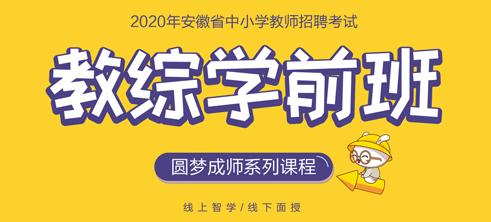 2020安徽教师招聘考试教综学前班