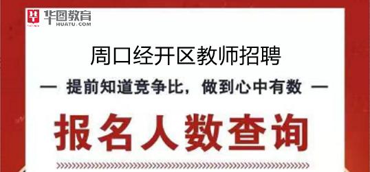2019周口经济开发区招教报名人数查询