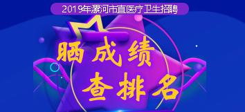 2019漯河市直医疗卫生招聘成绩排名查询系统