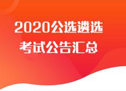 2020公选遴选考试公告汇总