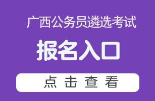 2020广西公务员遴选考试报名入口
