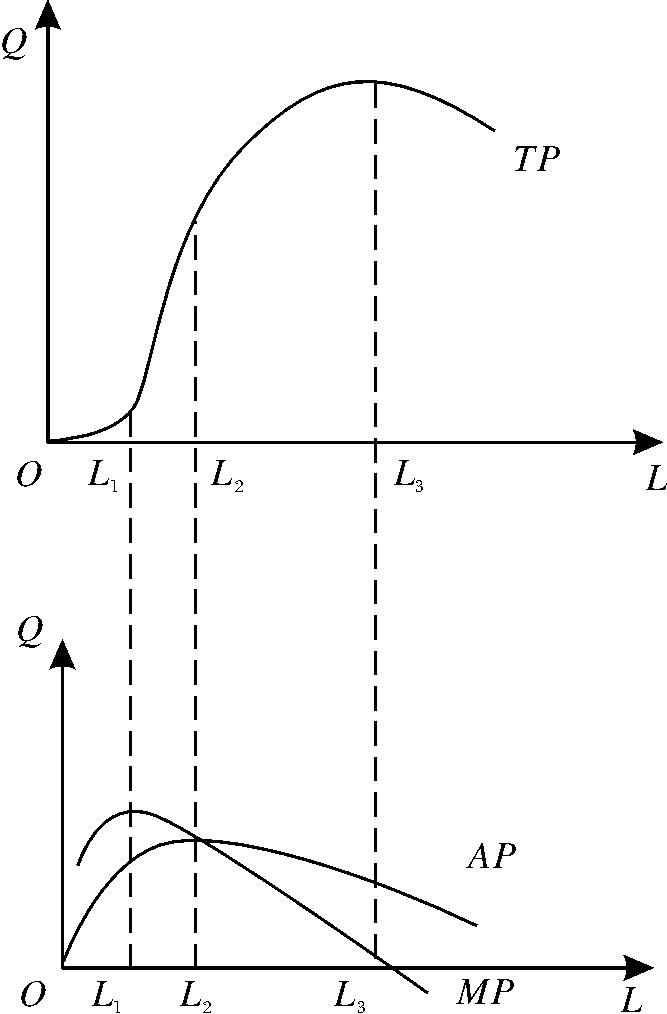 生產函數圖形及位置關系
