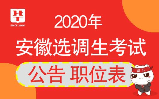 安徽人事考试网-2020安徽选调生考试公告何时公布?