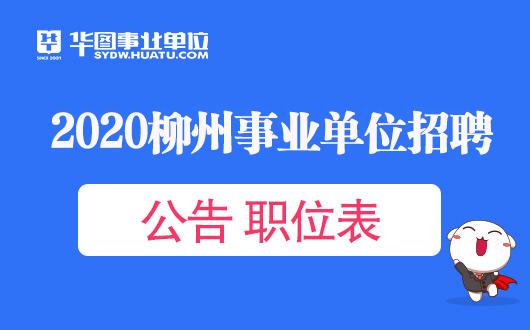 2020柳州事业单位招聘考试公告职位表