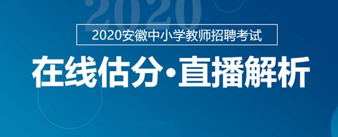 2020年安徽中小学教师考试试题估分