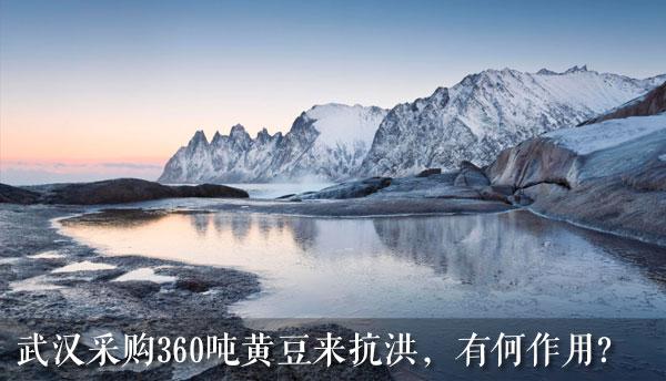 武汉采购360吨黄豆来抗洪,有何作用?