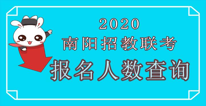 2020南阳招教联考报名人数查询