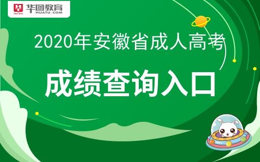 2020安徽成人高考成绩查询入口