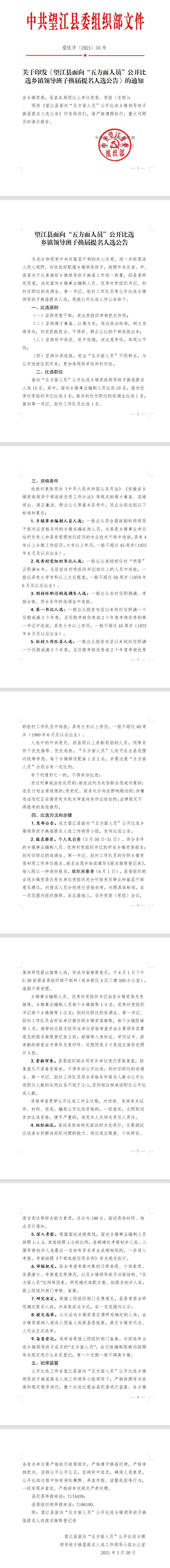 2021年安庆市望江县比选乡镇领导班子15人公告