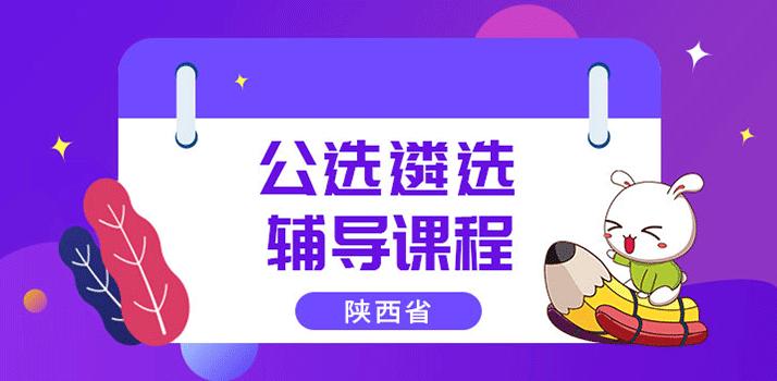 陕西公选遴选辅导课程