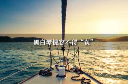 """申论热点:李云迪嫖娼被拘,黑白琴键容不得""""黄"""""""