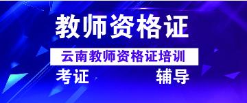 云南教师资格考试课程